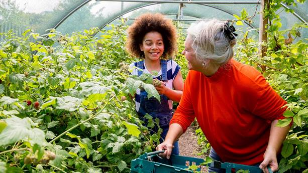 A woman and young girl gardening in a greenhouse