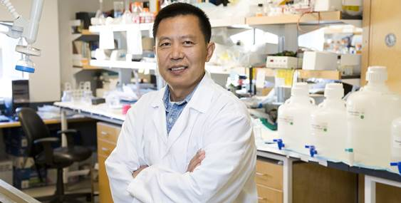 Dr. Wang standing in his lab in a white lab coat